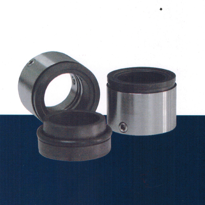 C86 - Spring Externally Mounted Slurry Mechanical Seal